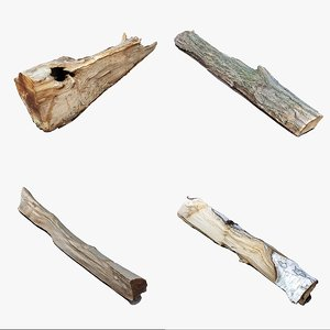 scan wood logs 3D model