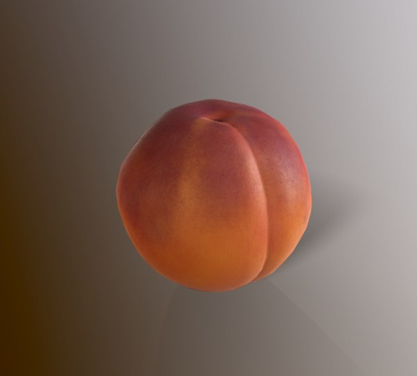 peach fruit food model