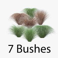 carex pack bush model