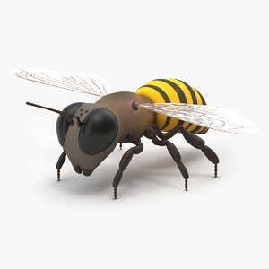 cartoon bee model