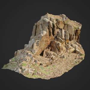 scanned cliff face f 3D model