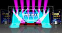 3D model stage concert t
