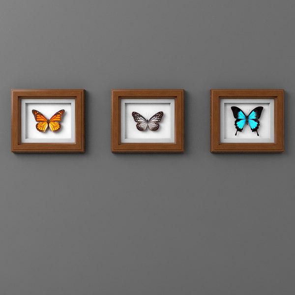 3D framed butterflies