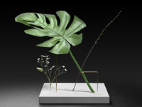 postures vase monstera 3D model