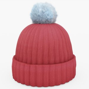 red winter 3D model