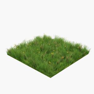 3D model grass dandelions ready