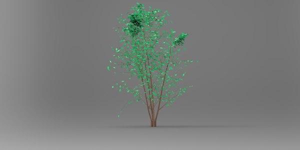tree real rhinoceros 3D model