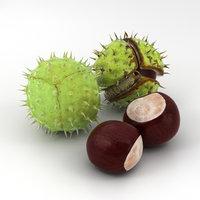 3D model chestnut nut