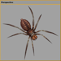 monster - spider 03 3D model