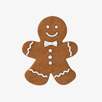 gingerbread cookie ginger model