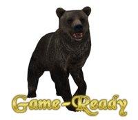 photorealistic bear 3D model