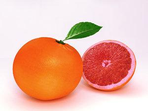 3D grapefruit fruit