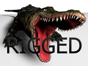 3D alligator rigged
