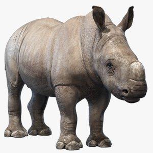 3D big rhino baby
