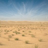 3D desert landscape model