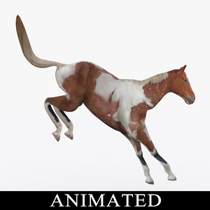 rigged jumping horse 3D model