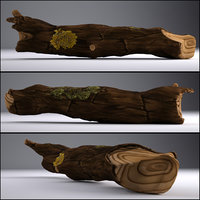 Tree Trunk - Game Asset