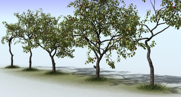 3ds max tree apple