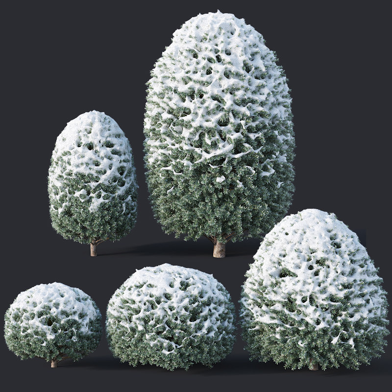 yew snow 3D model