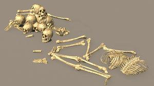 3D model human bone