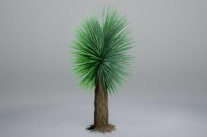 yucca pbr 3D model