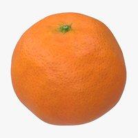 realistic mandarin model