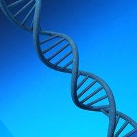 3D dna gene science model