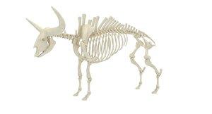 bison latifrons 3D