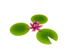 water lilly cartoon 3D model