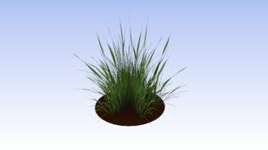 grass plant nature 3D model