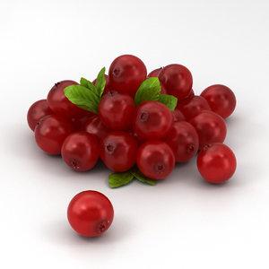 cranberry berry 3D model