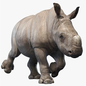 big rhino baby animations 3D model