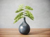 fern plant vase 3D model