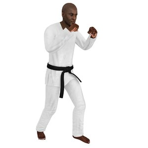 3D rigged karate 4 model