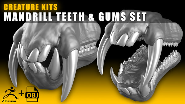 creature teeth file mandrill 3D model