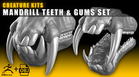CREATURE KITS: Mandrill Teeth & Gums - High Poly OBJ File / ZBrush File with Subdivisions