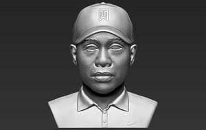 tiger woods bust ready 3D model