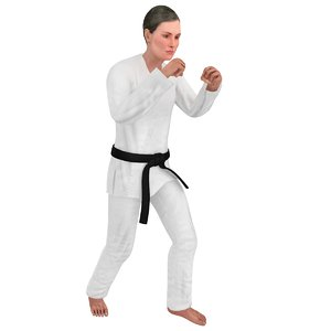 rigged karate 3D