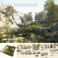 Rocky forest scene A