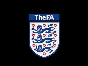 national football team logo 3D model