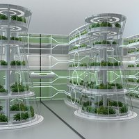Hydroponics Vertical Farm