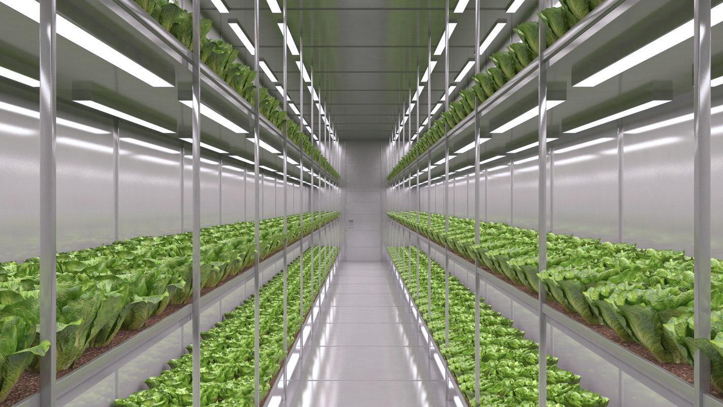 hydroponics farm 3D model