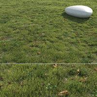 3D grass field model
