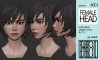 Female Anime Head #1