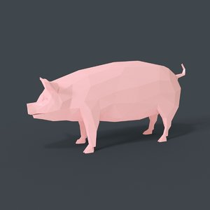 3D cartoon pig toon