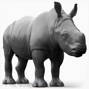 realistic rhino baby model