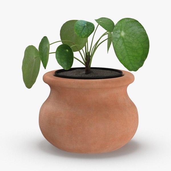 3D house-plant-02