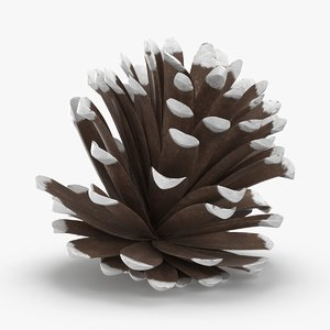 3D frosted-pine-cones---04