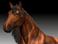 realistical horse 3d 3ds