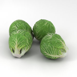 3D brussels sprout